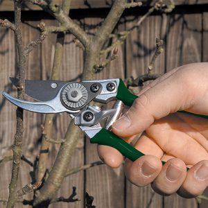Gartenschere - Pocket Pruner - Burgon & Ball - lifestyle - Franks kleiner Garten