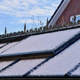 Gewächshaus - Hoklartherm - Dachfenster - Franks kleiner Garten