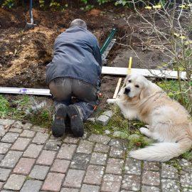 Gewächshaus - Hoklartherm - Fundamentrahmen - Gernot - Bruno - Franks kleiner Garten