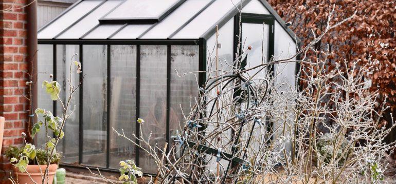 Gewächshaus - Hoklartherm - Winter - Endlich fertiog - Franks kleiner Garten