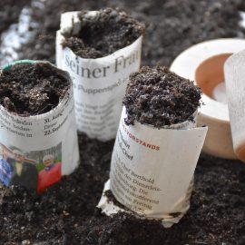 Anzucht - Töpfchen - Pot Maker - Lifestyle - Franks kleiner Garten
