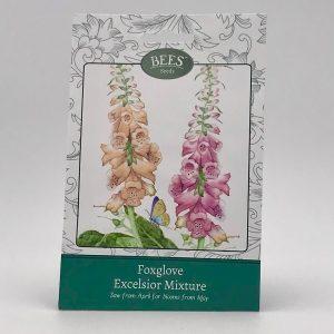 Fingerhut - Samentütchen - saatgut - BEES Seeds - Franks kleiner Garten
