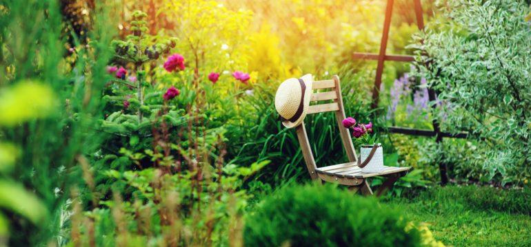 Garten - Fehler vermeiden - Planung - Tipps - Franks kleiner Garten