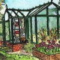 Gewächshaus - Hoklartherm - Illustration - März - Franks kleiner Garten