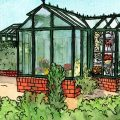 Gewächshaus - Hoklartherm - April - Illustration. Franks kleiner Garten