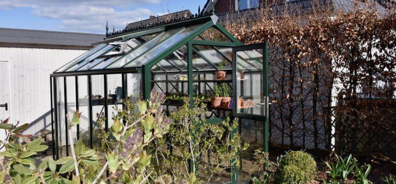 Gewächshaus - Hoklarthern - T-linie - Lüften - Tür - Fenster - Franks kleiner Garten