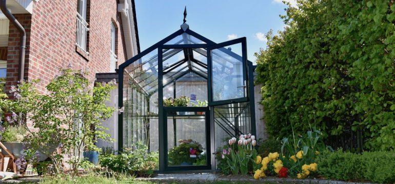 Gewächshaus - Hoklartherm - Mai - Franks kleiner Garten
