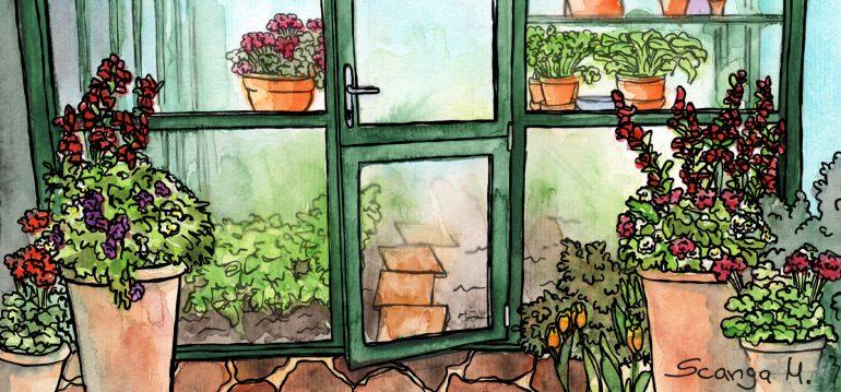 Gewächshaus - Hoklartherm - Illustration - Mai - Franks kleiner Garten