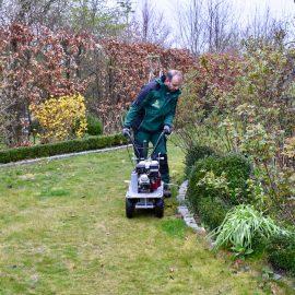 Stihl - iMow - Begrenzungsdraht - Rasen - Frühling - Arbeiten - Franks kleiner Garten