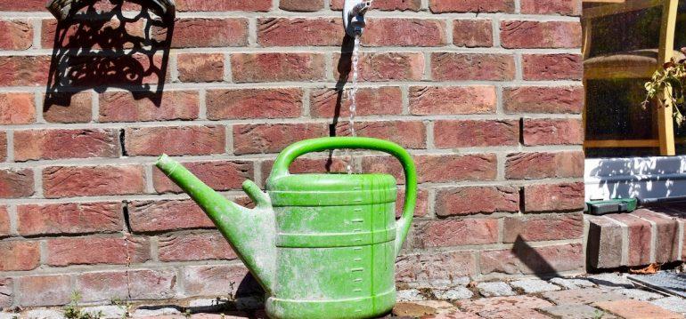 Gewächshaus - Hoklartherm - Giesskanne - Wasser - Wässern - Franks kleiner Garten