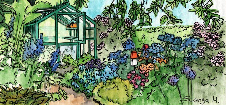 Juli - Gewächshaus - Hoklartherm - Garten - Sommer - Franks kleiner Garten