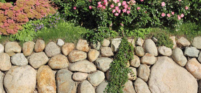 Biogarten - Friesenwall - Trockenmauer - Steinmauer - Findlinge - Franks kleiner Garten