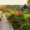 Biogarten - Garten - Rosen - Steinweg - Gartenweg - Gartenhaus - Romantisch - Idyllisch - Franks kleiner Garten