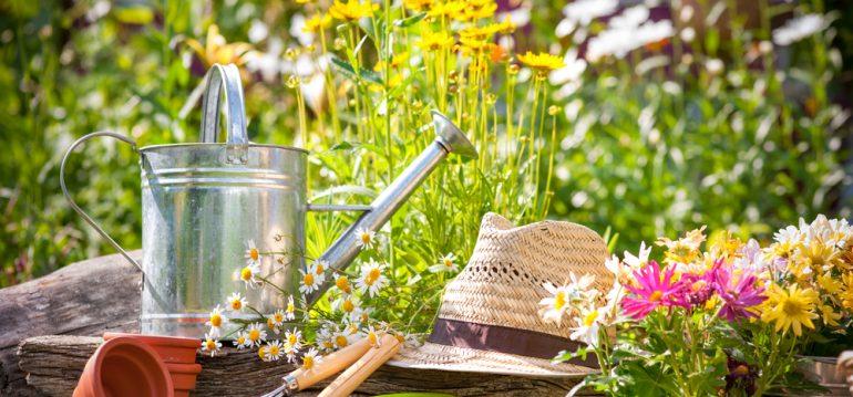 Garten - Sommer - Frühling - Gartenarbeit - Giesskanne - Hut - Blumen - Franks kleiner Garten
