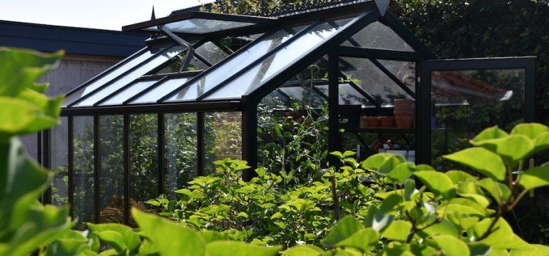 Gewächshaus - Hoklartherm - Zero Waste - nachhaltig Gärtnern - Franks kleiner Garten