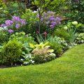 Gartenplanung - Gartenanfänger - Beet - Tipps - Franks kleiner Garten