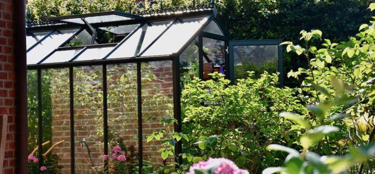Gewächshaus - Hoklartherm - Oktober - Lüften - Fensterheber - Franks kleiner Garten