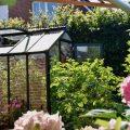 Gewächshaus - Hoklartherm - Sommer - Franks kleiner Garten