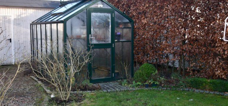 Gewächshaus - Februar - Winter - Außen - Franks kleiner Garten