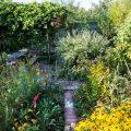 Nachhaltigkeit - Perma-Garten - Natur - Franks kleiner Garten