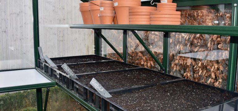 Gewächshaus - März - Anzucht - Anzuchtkisten - Salate - Franks kleiner Garten