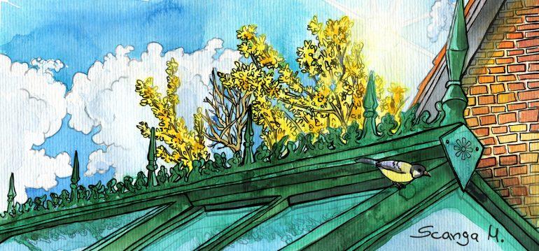 Gewächshaus - März - Illustration - Franks kleiner Garten