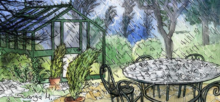 Illustration - Gewächshaus - Regen - Sturm - Herbst - Oktober - Franks kleiner Garten