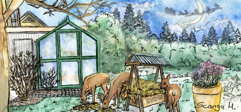 Gewächshaus - Illustration - Dezember - 2020 - Franks kleiner Garten