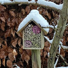 Kolumne - Winter - Insektenhotel - Schnee - Januar - 2021 - Franks kleiner Garten