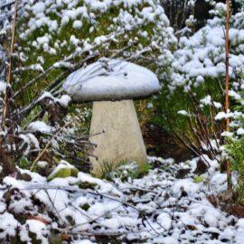 Kolumne - Winter - Schnee - Staddlestone - Vorgarten - Januar - 2021 - Franks kleiner Garten