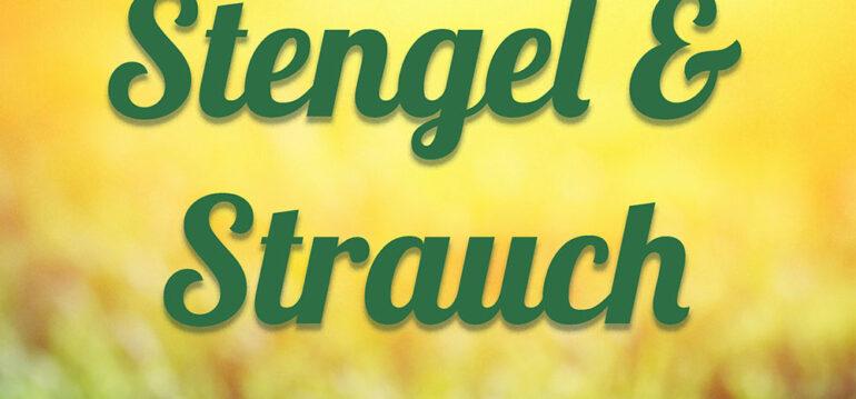 Stengel & Strauch