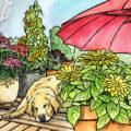 April - 2021 - Kolumne - Unwetter - rollende Gärten - Franks kleiner Garten