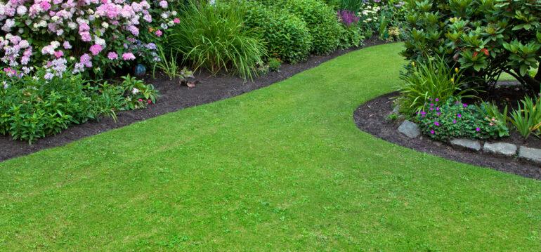 Stihl-Rasenluefter-Vertikutieren-Rasen-Gras-Frühling-Franks-kleiner-Garten